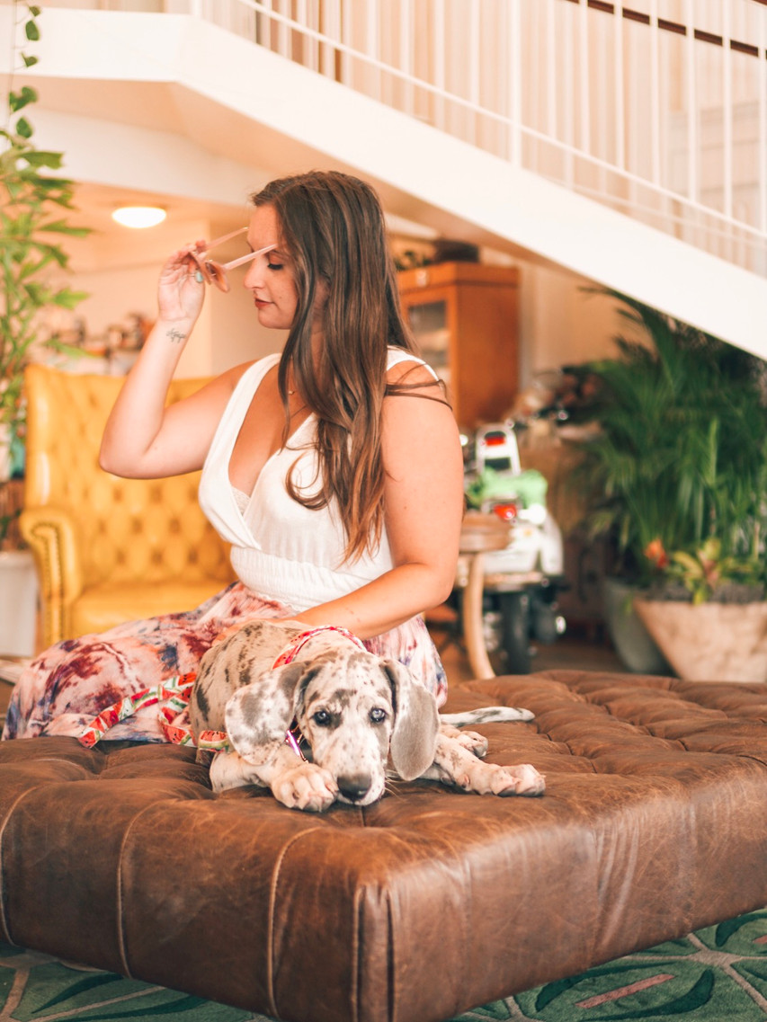Havana Cabana Key West Florida Pet Friendly Resort colorful lobby Bubbly Yogi  great dane puppy