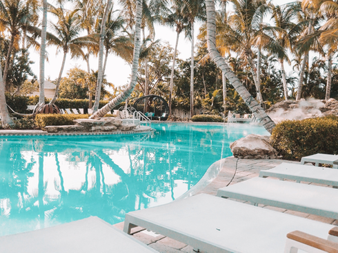 The Pet Friendly Resort You Need to Book in Key West Florida