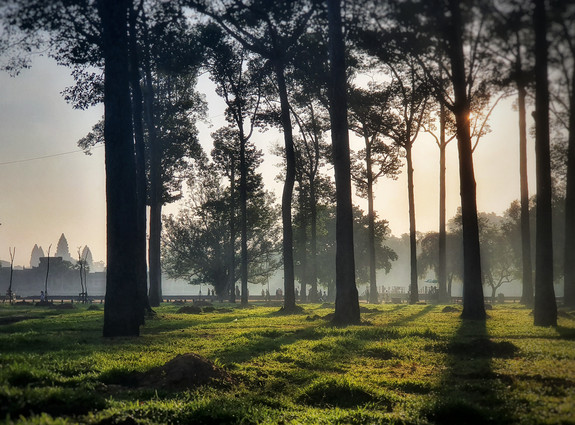 Early light in front of Angkor