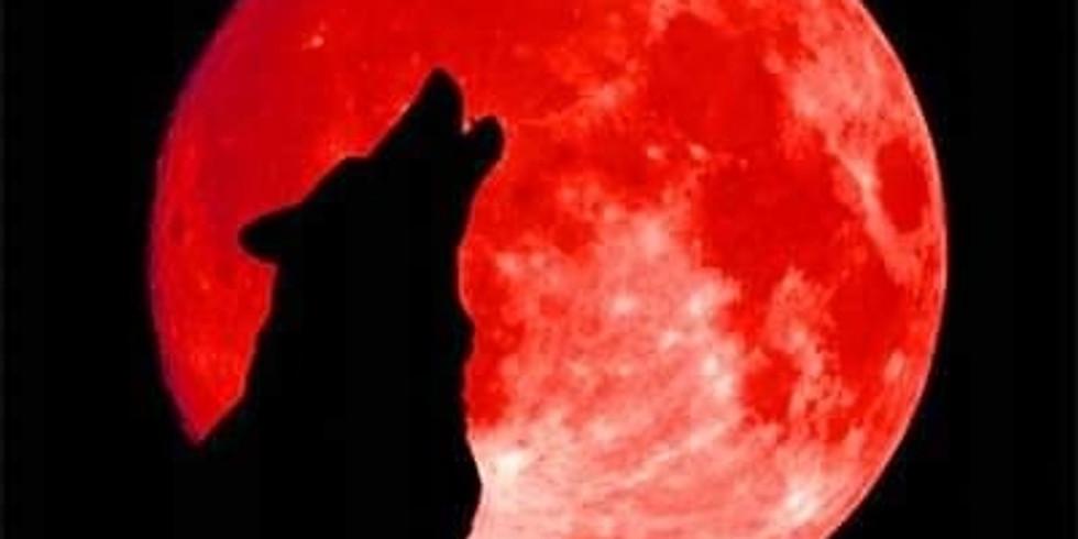 III urodziny Black Wolf VS