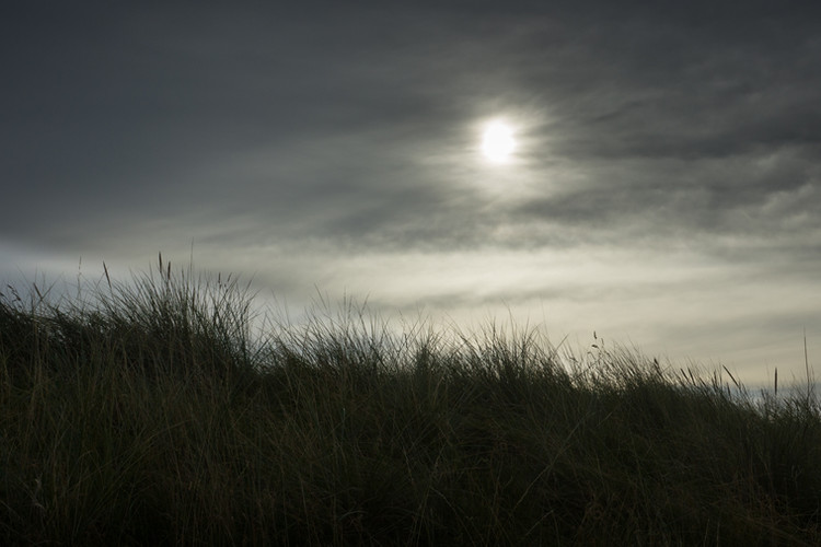 Evening over the dunes