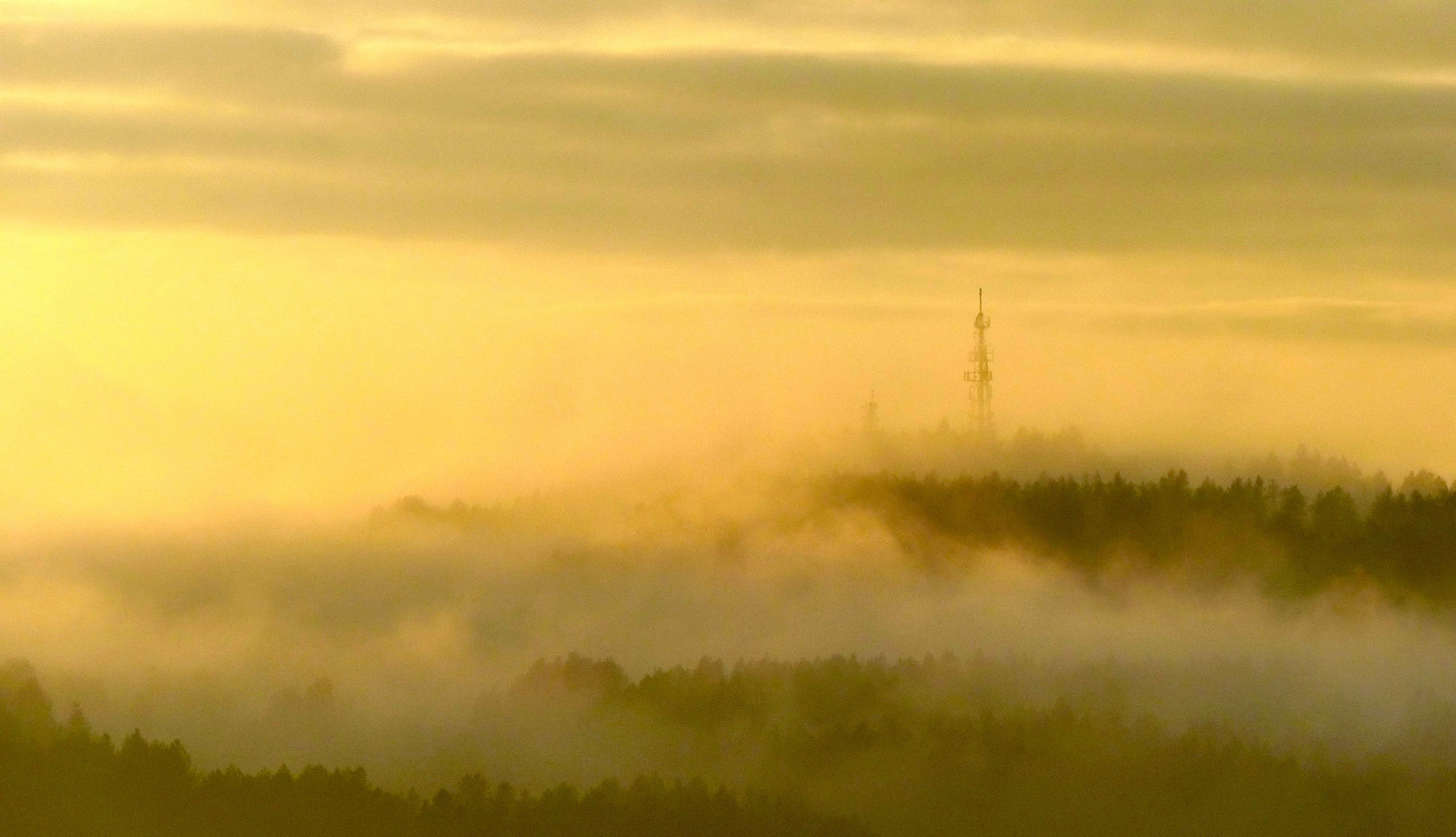 Yellow Mist