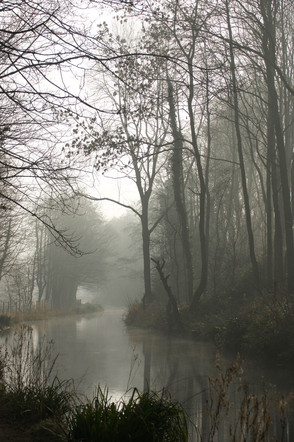 Misty Morning on Cromford Canal