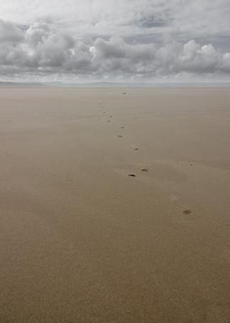 Footsteps ...
