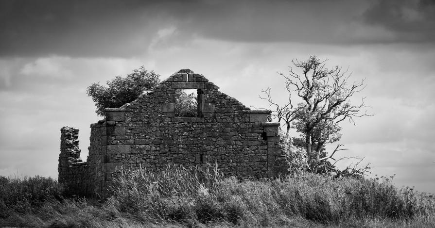 Baxter's Barn