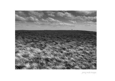 Rowlee Pasture 001