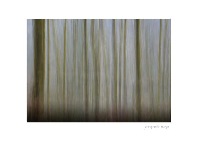 Lea Wood 001