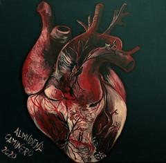 Heart Anterior view