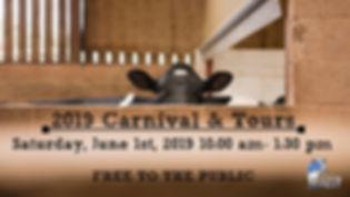 Carnival & Tours.jpg