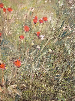 Prairie aux tulipes
