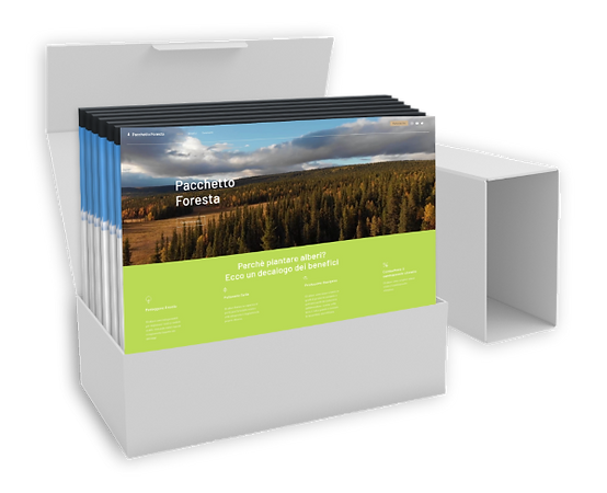 KIT - PACCHETTI  FORESTA afphoto.png