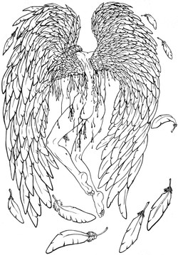 wings (birth of an angel)