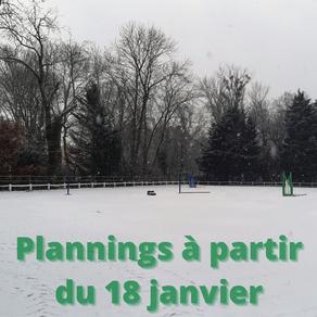 Plannings à partir du 18 janvier