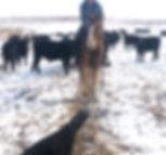 Shayna J. Blue (roping) pic.jpg