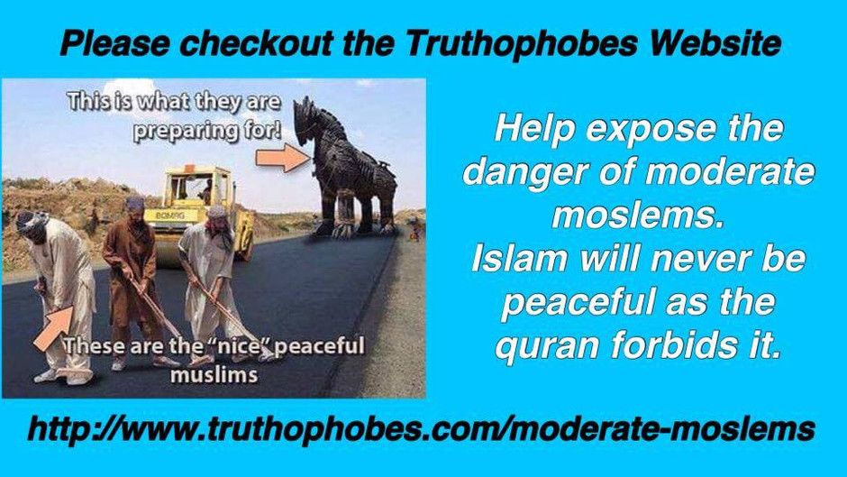 Learn More About Moderate moslems