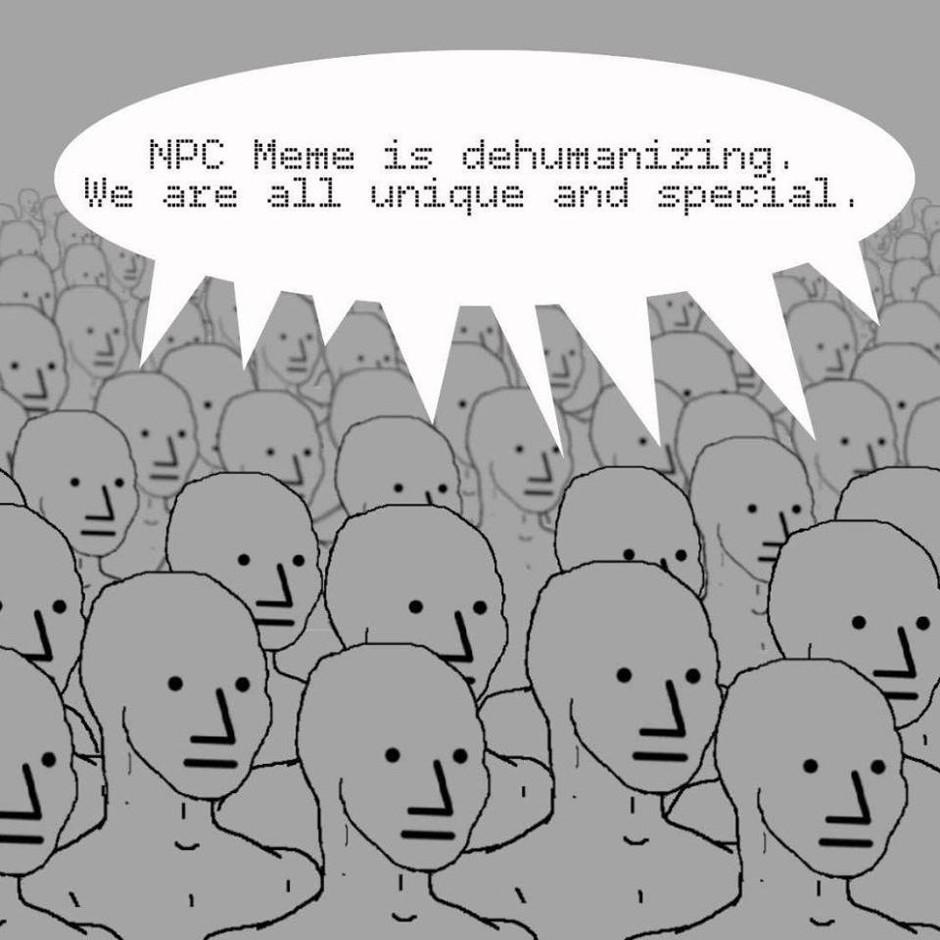 NPC Memes Infuriate the Left