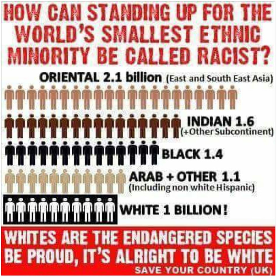 Whites Are The Minority Race