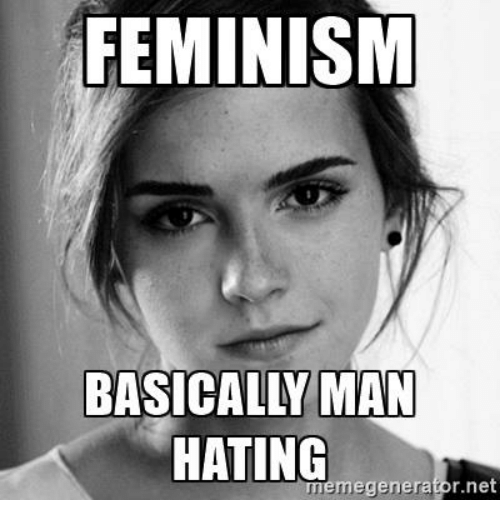 feminism-basically-man-hating-r-net-meme