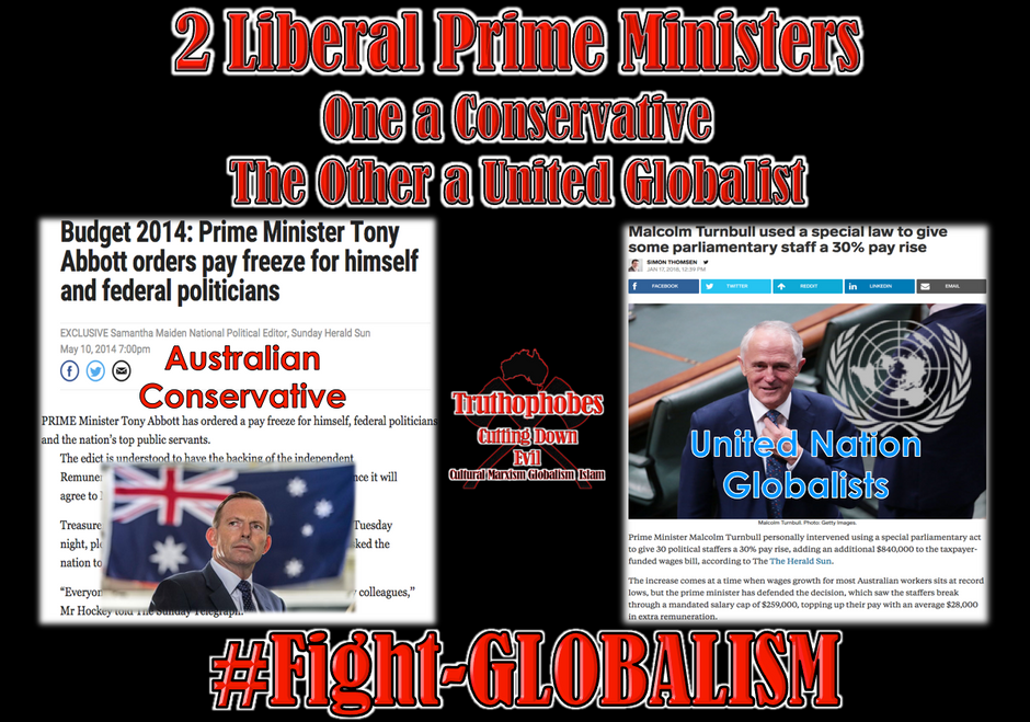 _Conservative vs Globalist (1).png