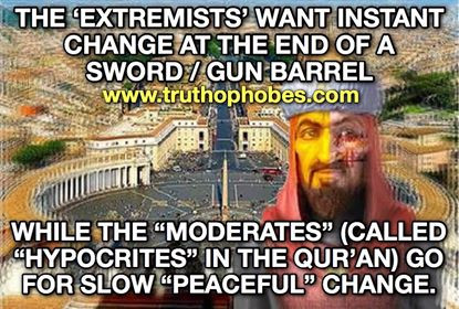Moderate moslems