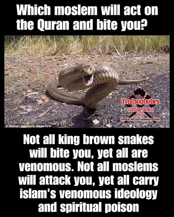 EXPOSE THE QURAN - IT BITES