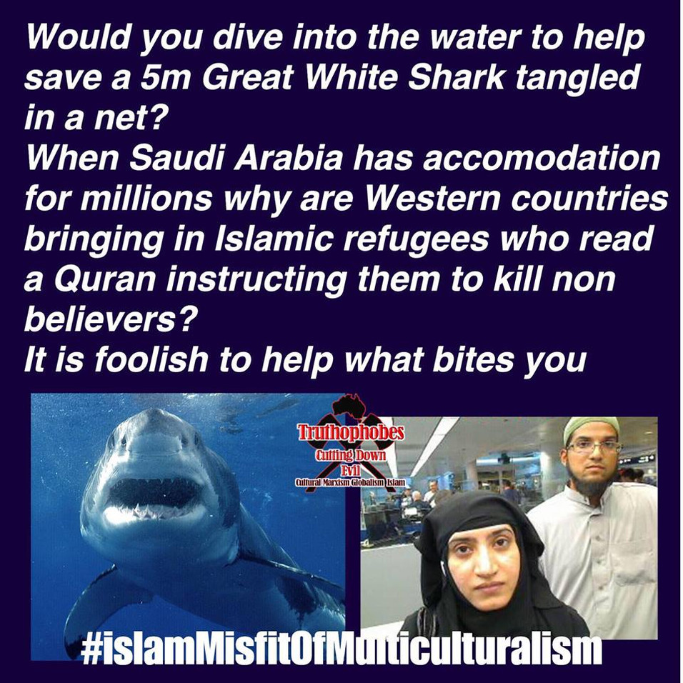 Western leaders must stop the foolish policy of islamic immigration. moslems are misfits of multiculturalism. Left Wing tools to change the culture of the West and support the Marxist agenda. moslems who read the Medina quran are instructed by mohammed to kill non believers..