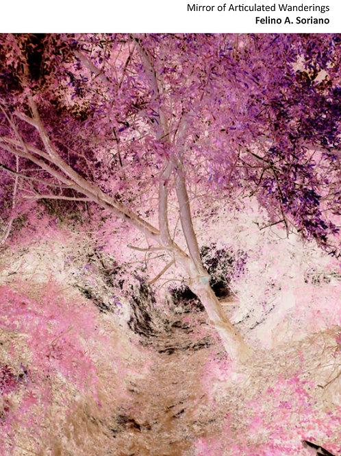 Mirror of Articulated Wanderings - Felino A Soriano