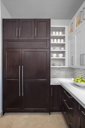 kitchen-refrigerator-panel-spirit-door-b