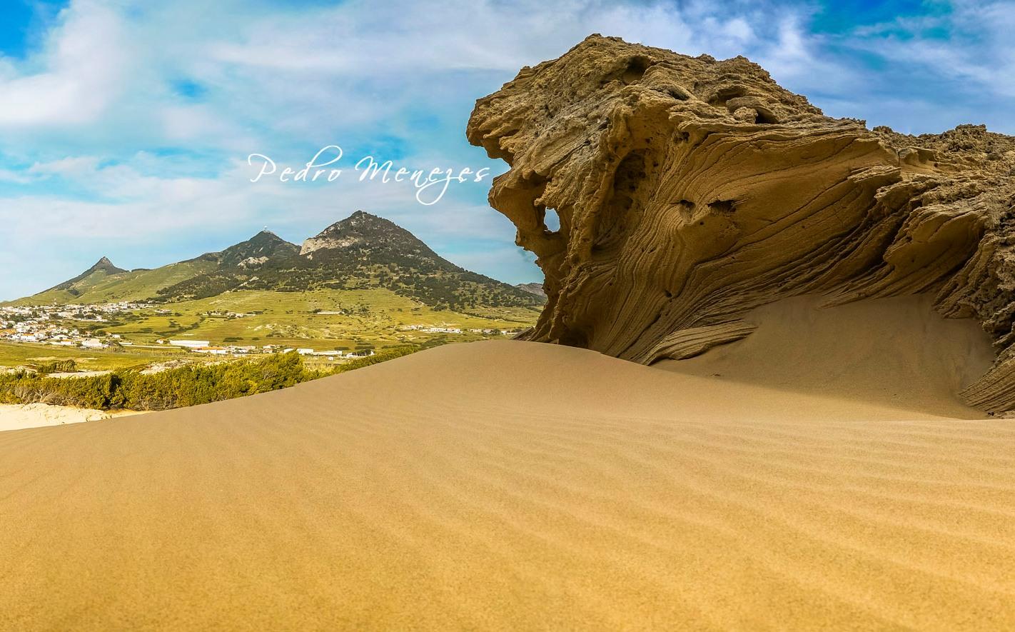 Porto Santo dunas
