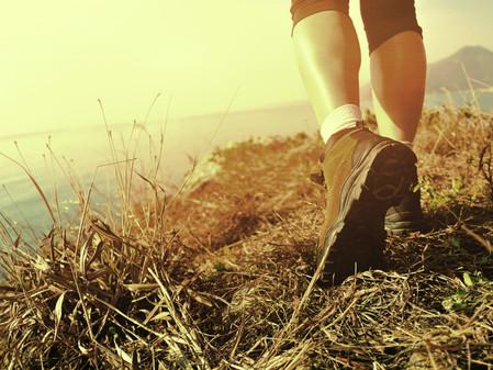 Los 5 principales beneficios para la salud mental y emocional de volver a la naturaleza