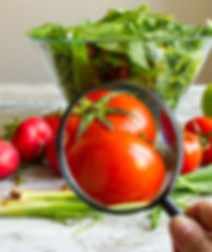 magnifying glass looking at a tomatoe on cutting board