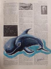 """"""" Baleine 2"""" Labarussias"""