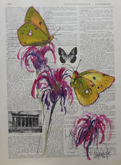 Trois papillons jaunes