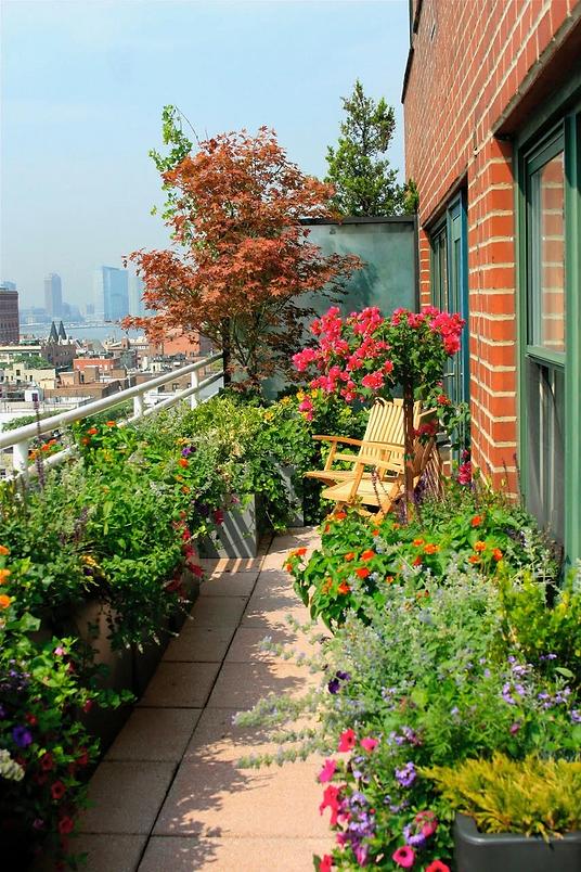 13 Urban Garden Ideas for Small Spaces.p