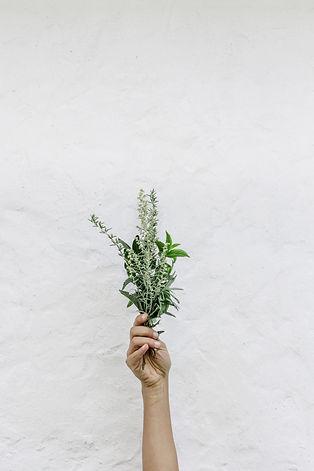 Basic Tips for Simple Living • Hestia Sp