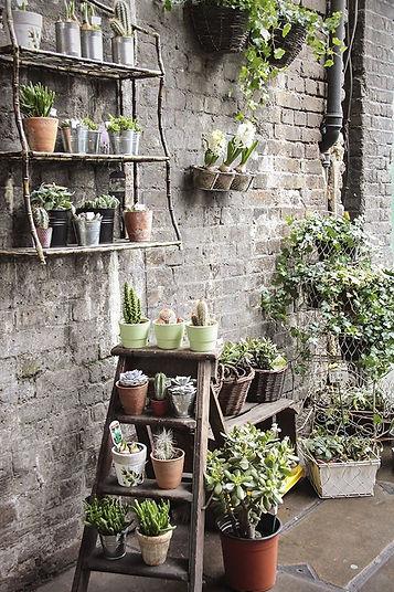11 Urban Garden Ideas For Tiny City Spac