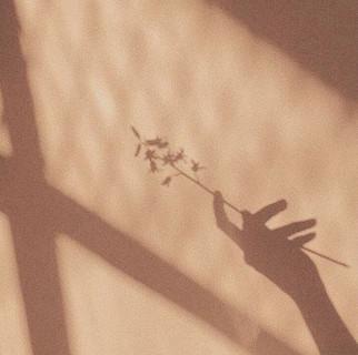 HOME_FLOWER.jpg