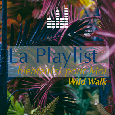 Playlist Wild Walk