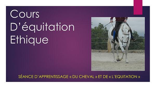 Cours_d'équitation_Ethique à la ferme équestre de vispens