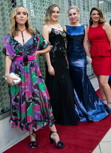 red carpet dresses (color).jpg
