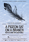 A Pigeon Sat on a Branch