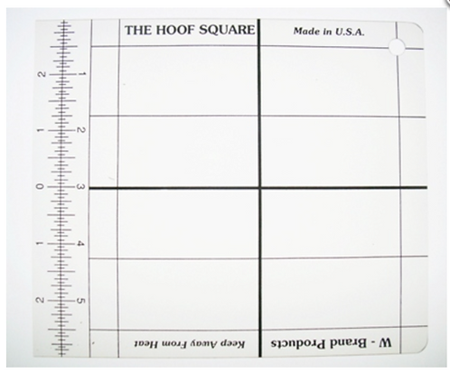 W-Brand Hoof Square