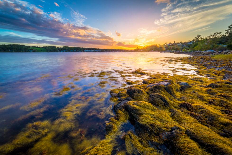 Mahone Bay Sunset