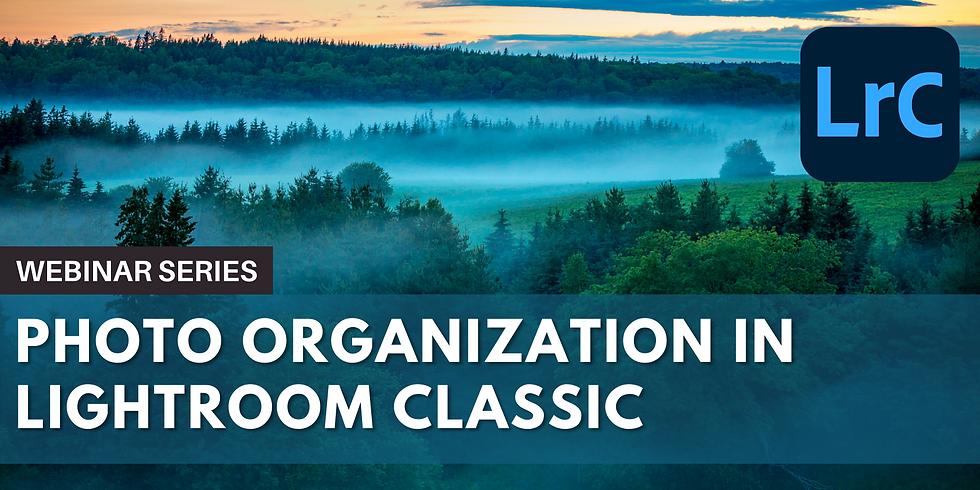 Photo Organization in Lightroom Classic