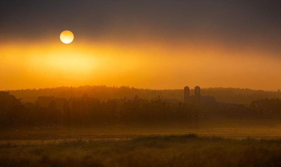 Sunset through the fog