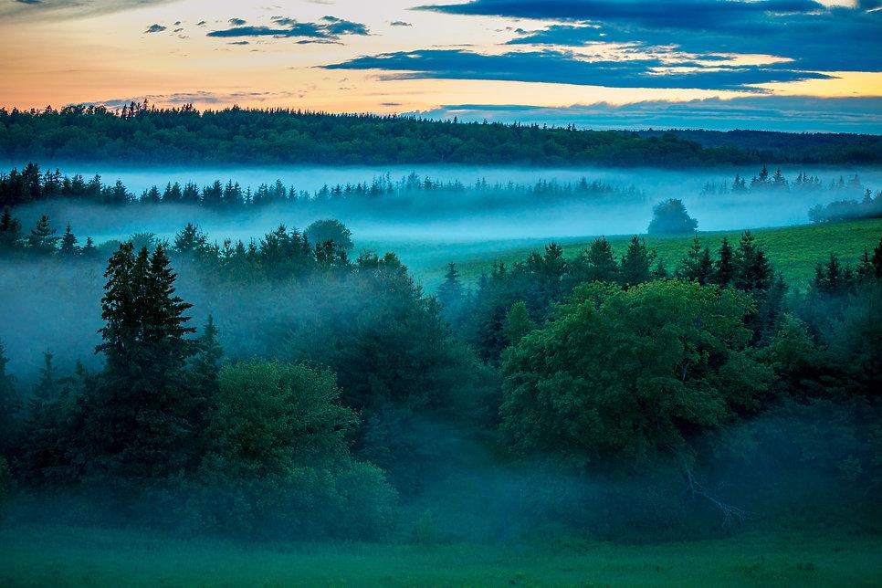 foggy-hills.jpg