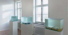 Viborg Folkeblad Anmeldelse 30032016_edited.jpg