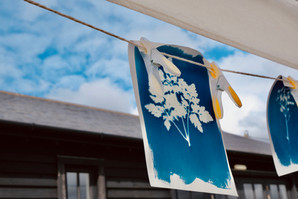 Cyanotype workshop at stalisfield village hall