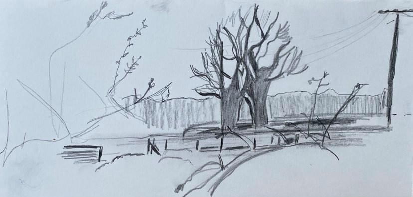 Beginners introduction to drawing workshop at Stalisfield village hall