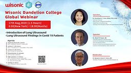 -Introduction of Lung Ultrasound -Lung Ultrasound Findings in Covid 19 Patients